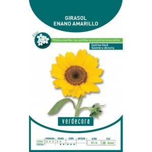 SEMILLAS-GIRASOL-ORNAMENTAL-VERDECORA-Plantas-Jardin-y-Mascotas
