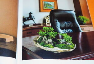 THE-BEAUTIFUL-SCENERY-BONSAI-BOOK-from-JAPAN-JAPANESE-1083