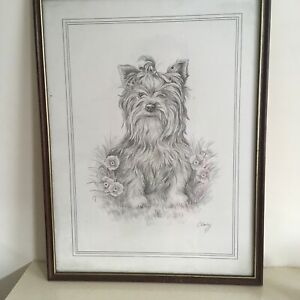 Vintage-Christine-Varley-Pencil-Drawing-Print-of-a-Yorkshire-Terrier-Signed