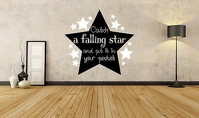 Catch a Falling Star and Put it in Your Pocket Wall Decal Vinyl Art Sticker B16