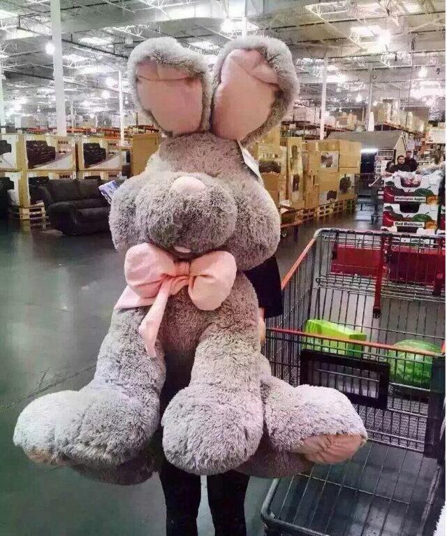Appena VALENTINE Costco HOLLAND LOP Bunny Coniglio Morbido Giocattolo Peluche STUFFED DOLL 24