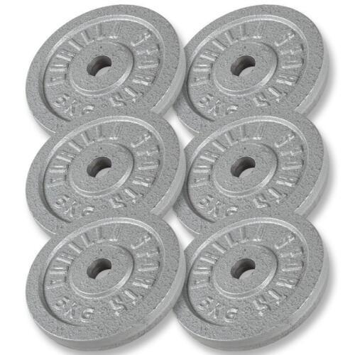 30Kg Hantelscheiben GUSSEISEN Hanteln Hantel Gewichte 6x5 KG