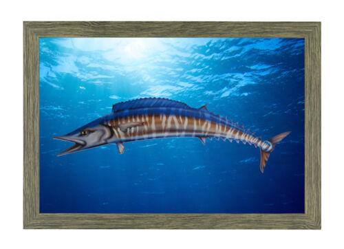 Wahoo Fish Mount