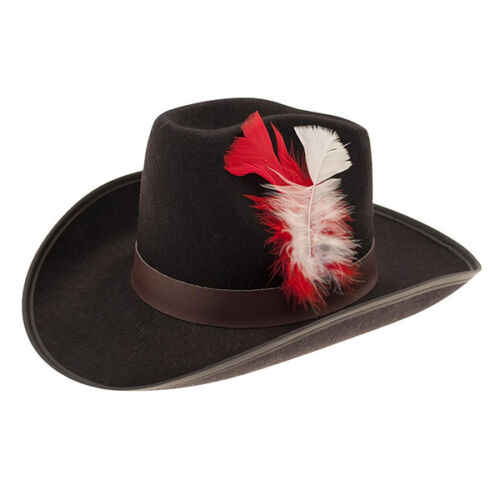 Wsl* Hat Cowboy Black Band Hat With Feather Fancy Dress Costume Accessory
