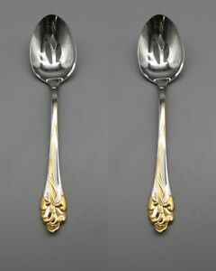 SET-OF-TWO-Oneida-Stainless-GOLDEN-AMARYLLIS-Slotted-Serving-Spoons-USA