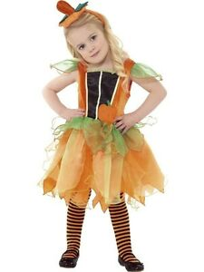 Image is loading Girls-Toddlers-Pumpkin-Fairy-Princess-Fancy-Dress-Costume-  sc 1 st  eBay & Girls Toddlers Pumpkin Fairy Princess Fancy Dress Costume Halloween ...