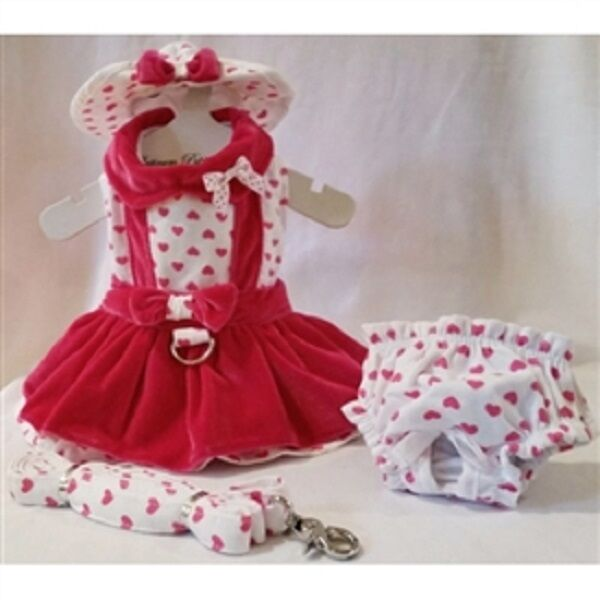 Lady Love Dog Dress 4 Pc Set with Hat, Panties, & Leash XS, S, M, L