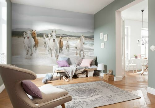 Géant Papier Peint 368x254cm Chevaux Blancs Pour Enfants Chambre Papier Peint Blanc Decor