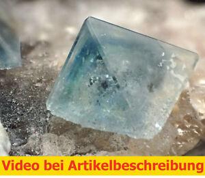 6877-Fluorite-Oktaeder-ca-9-8-17-cm-Shijiangshan-China-MOVIE