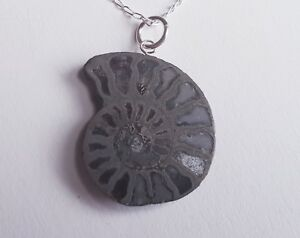 EntrüCkung Pyritised Fossil Ammonit Scheibe Halskette Reich Und PräChtig Uhren & Schmuck