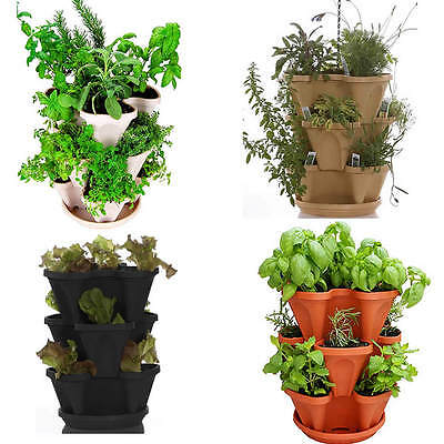 HANGING STACKABLE PLANTER POT+ CULINARY HERB GARDEN GROWING KIT - GROW HERBS