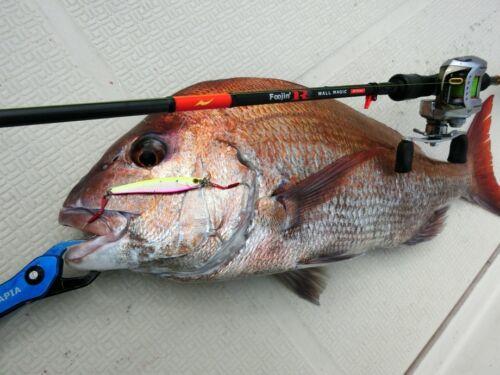 Shore Jig APIA SEIRYU HYPER 40gr Japan Casting Jig,Shore Jigging,Assist Hooks