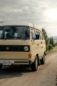 1981 VW Westfalia