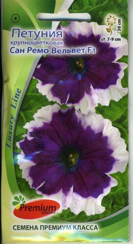"""Yard, Garden & Outdoor Living Petunia grandiflora """"San Remo Velvet F1"""""""