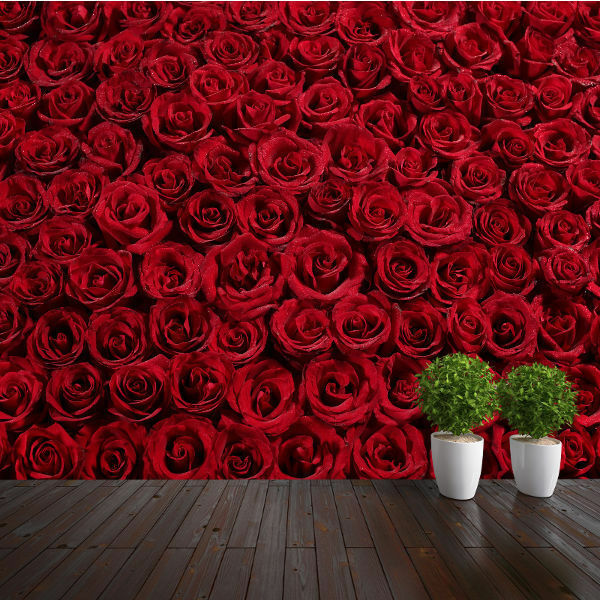 Wallpaper Red Roses Carpet Closeup Wall Paper 300cm Wide 240cm Tall Wmo013