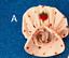 Strawberry Shortcake Vintage 1980 Hat Shoes Culotte 80s Kenner # Choose