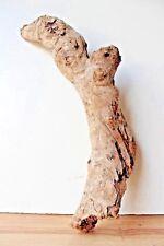 Schwemmholz  Treibholz  Driftwood 1 XL  Skulptur  Dekoration Basteln Weihnachten