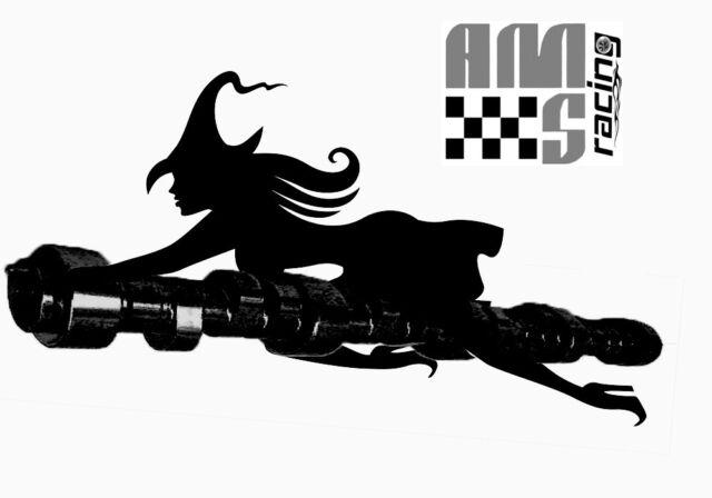 AMS RACING STAGE III WICKEDSTIK CAMSHAFT GM GEN III LS1 LS6 LQ4 LQ9 .621/.624
