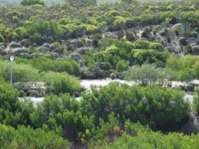 Land Land For Sale in Struis Bay Western Cape