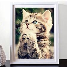 DIY 5D Diamond Painting Cute Kitten Cat Embroidery Cross Stitch Home Decor