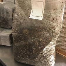 5 lbs sterilized compost mushroom growing kit bulk substrate grow like magic