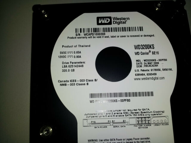 Western Digital 320GB Cavair SE16 Sata Hard Drive WD3200KS-00PFB0 DCM: HSCACA2AH