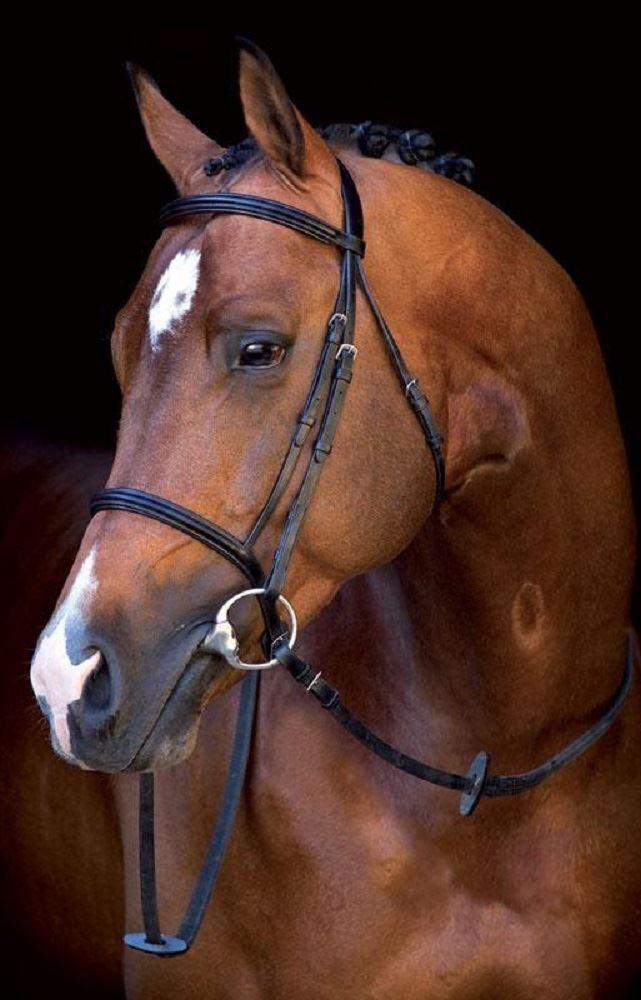 Horseware Ireland Mio Bride avec Rênes Écologique Cuir Confortable Sbsb20