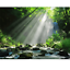 Nature Landscape DIY Painting By Numbers Set Kit Acrylic Painting On Canvas