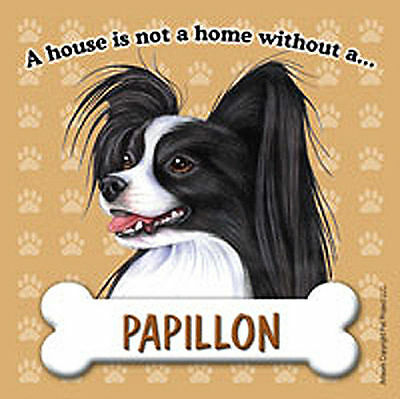 Papillon Dog Magnet Sign House Is Not A Home Blk/Wht