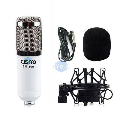 Broadcast Studio Recording Blue Dynamic Condenser Microphone +Shock Mount Kit