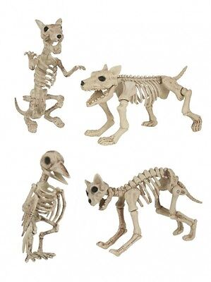 Halloween Decorations 3D Skeleton Model Animals Cat Dog Rat Bird
