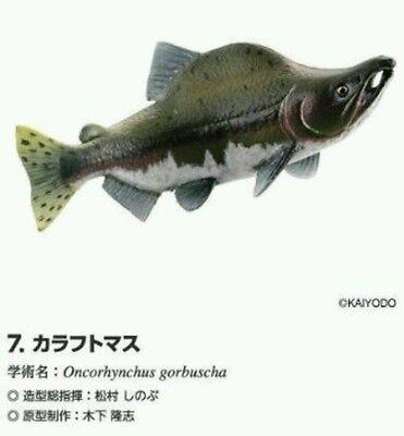 RARE Kaiyodo Hokkaido Limited Pink Salmon Trout Fish Figure Strap Nice!