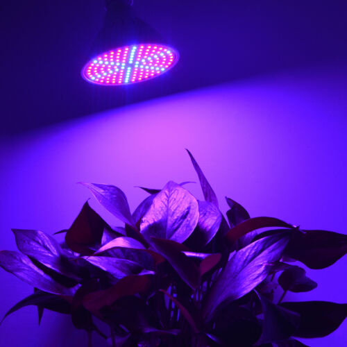 E27 200 LED Full Spectrum Plant Grow Lamp Veg Light Indoor For Hydroponic Plant
