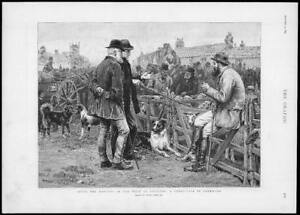1893-Antique-Print-CORNWALL-Harvest-West-England-Sheep-Fair-Collies-169
