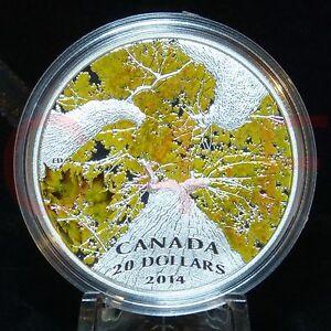 COA #500 - 2014 Canadian Maple Canopy #4 Autumn Allure $20 1 oz Pure Silver Coin