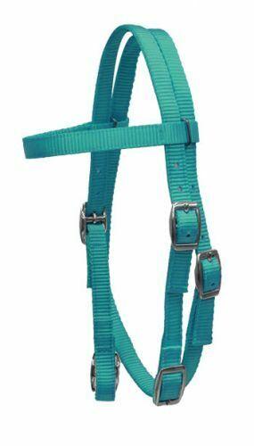 Brand New Premium 2 Ply Nylon Headstall Bridle PONY Size TEAL