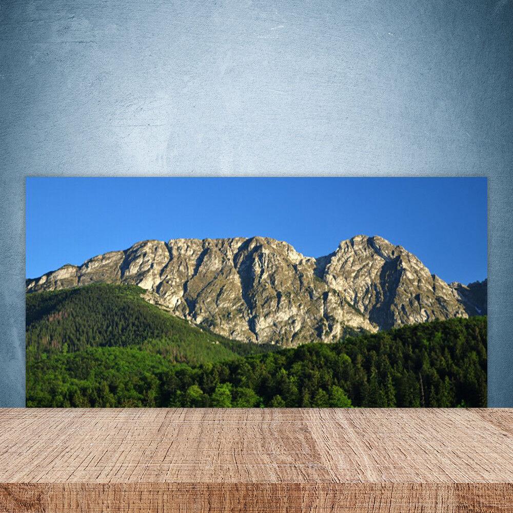 Vidrio Templado Cocina salpicaduras 100x50 naturaleza bosque de montaña