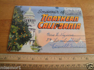 1951 Northern California Vintage Postcard folder Chandelier tree ...
