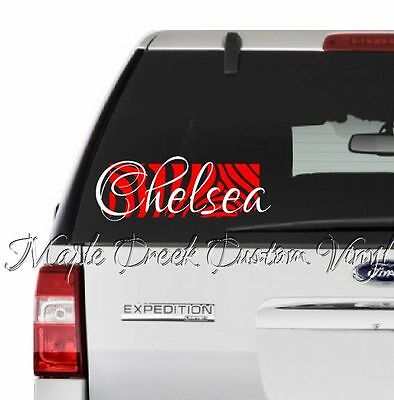 Zebra Background w// Name Decal ~ 20 Colors Available ~ 6 inches long