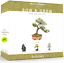 thumbnail 10 - Nature'S Blossom Bonsai Tree Kit - Grow 4 Types Of Bonsai Trees From Seed. Indoo