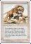Fourth Edition Savannah Lions