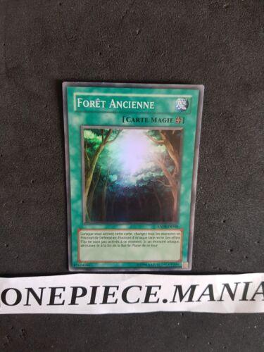 Yu-Gi-Oh Forêt Ancienne ANPR-FR048