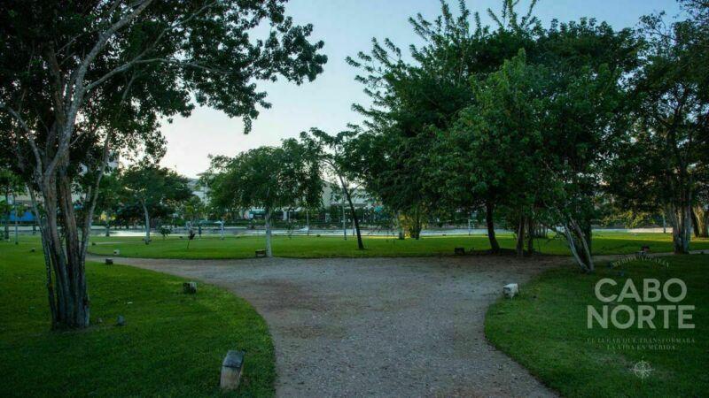 Lote en Privada Andana Cabo Norte, satisface los estilos de vida más exigentes.