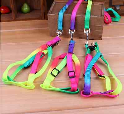 Adjustable Colorful Nylon Small Dog Puppy Pet Harness & Walking Leash