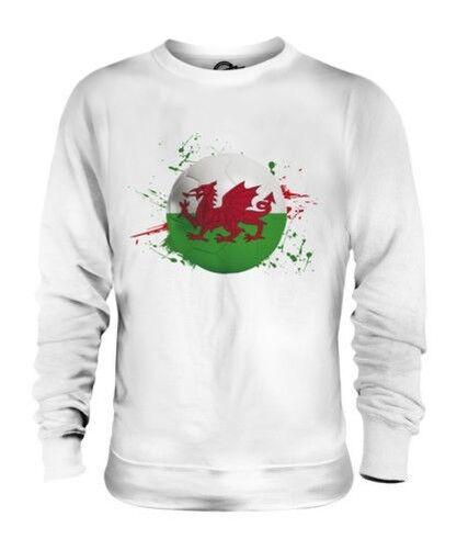 Wales Fußball Unisex Pullover Top Geschenk Weltmeisterschaft Sport