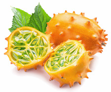 VEGETABLE KIWANO JELLY MELON - 20 SEEDS - Horned Cucumber - Cucumis metuliferus