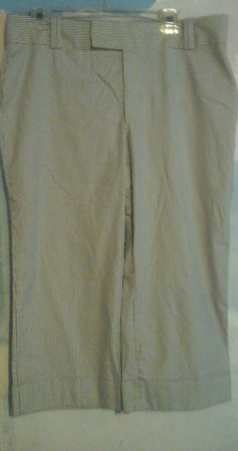 Banana Republic Pants In Stretch Cotton spandex In a bluee white Small Stripe, 14