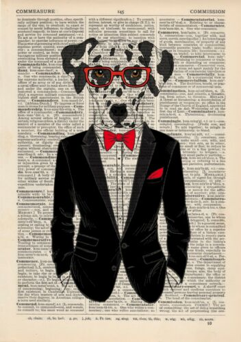 Dalmation In a Tuxedo Dictionary Art Print Wall Vintage Picture Animal Clothes