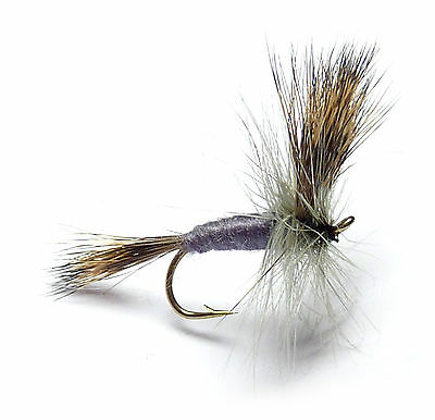3x, 6x or 12x Fly Fishing Trout Flies (SDF10) GREY WULFF MAYFLY Dry Fly