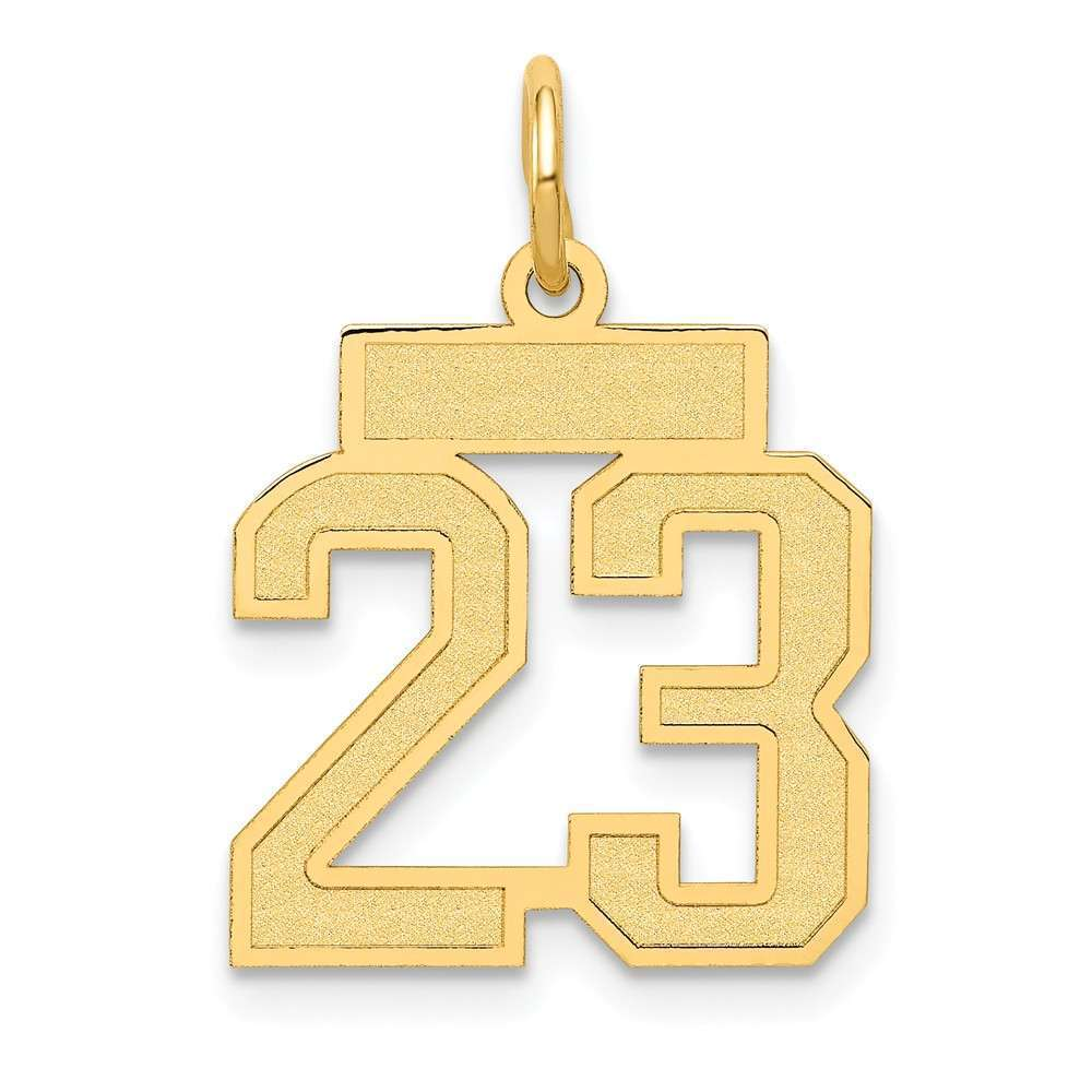 14K Yellow gold Small Satin Number 23 Charm